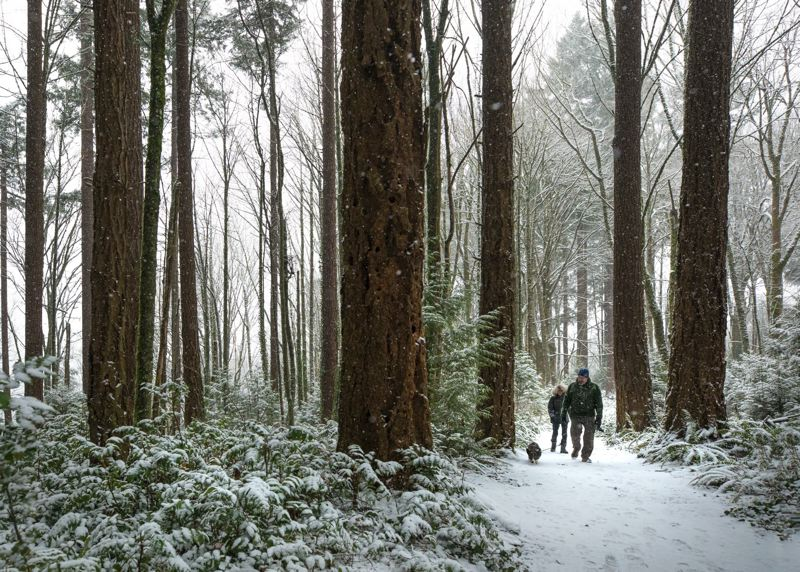 FILE PHOTO - Hikers enjoy the snow in Washington Park.