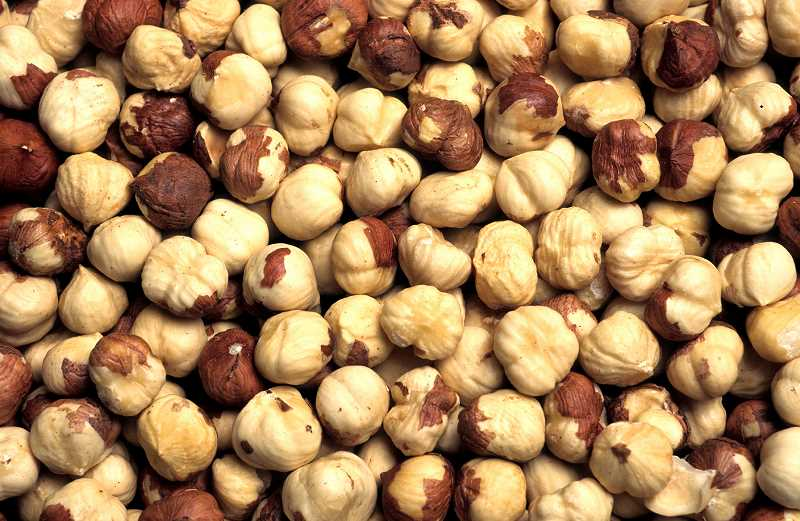 SUBMITTED PHOTO - A recent study by OSU praised the health benefits for older adults for adding more hazelnuts into their diets.
