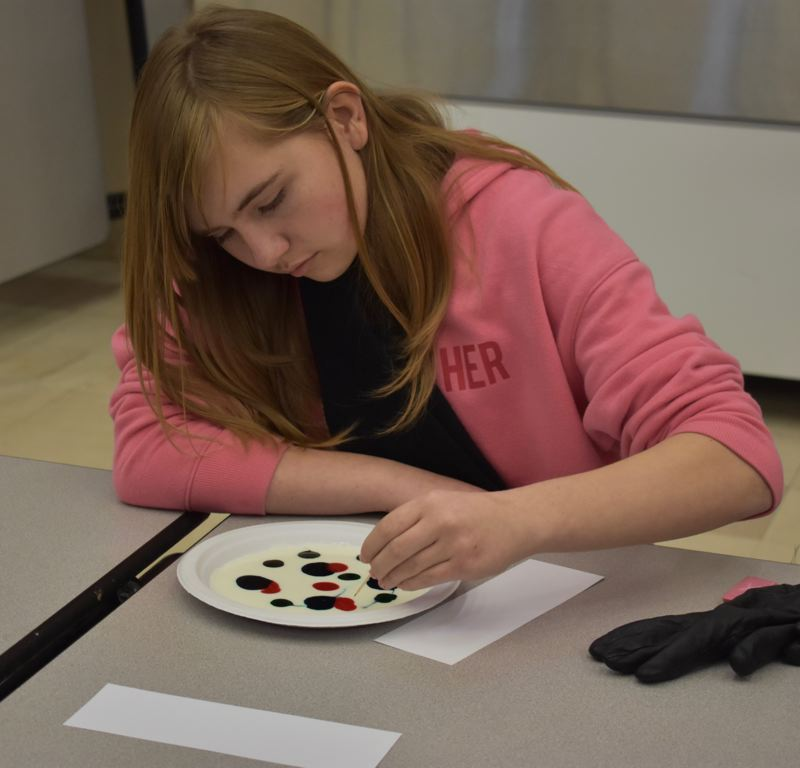 OUTLOOK PHOTO: TERESA CARSON - Catherine Morgan works on a milk bubble painting as an example of the art part of STEAM.