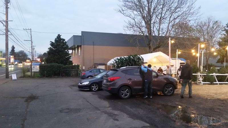 PHOTO BY RAYMOND RENDLEMAN - A staff member at the Christmas tree lot on Molalla Avenue helps a customer tie a tree to a car in Oregon City.