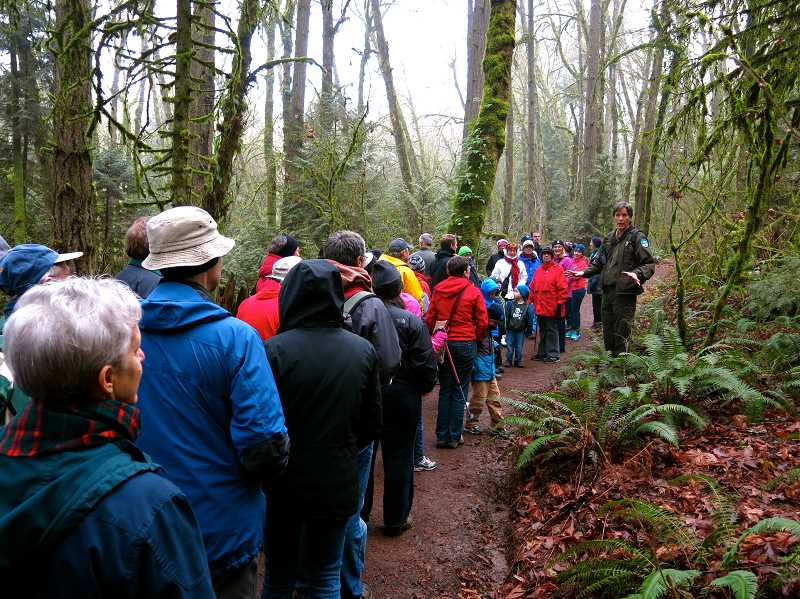 COURTESY PHOTO: OREGON STATE PARKS - Oregon State Parks hosts a free hike at Tryon Creek on New Years Day, encouraging people to enjoy the outdoors in the new year.