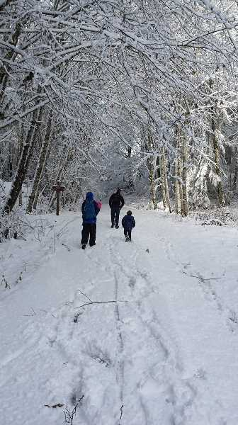 COURTESY PHOTO: OREGON STATE PARKS - L.L. Stub Stewart on Highway 47 is participating in First Day Hikes on Jan. 1, meeting at 10 a.m. at the Hilltop Day-use Area.
