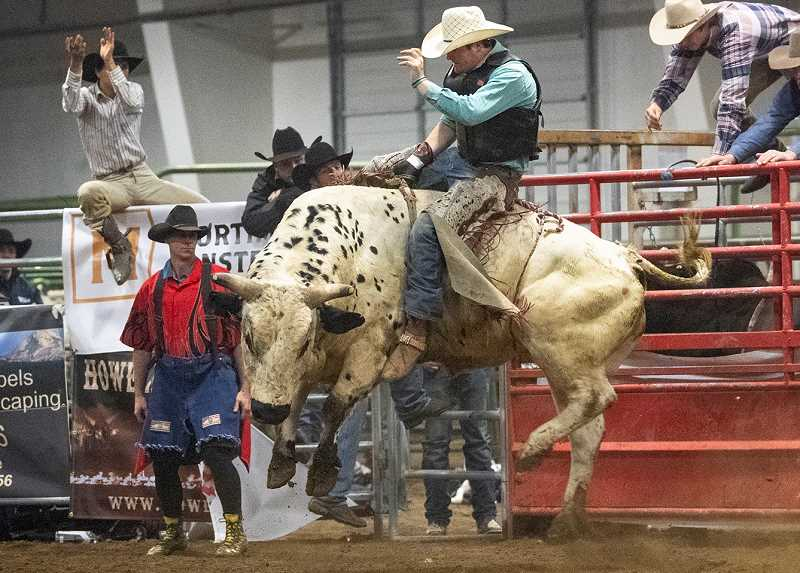LON AUSTIN/CENTRAL OREGONIAN - Riley Hix rides his second bull of the night Saturday at the Buckin' for Rowdy charity bull-riding competition, which was held at the Crook County Fairgrounds indoor arena. Hix had a score of 81 on the ride and posted a two-ride total of 158 to win the event.