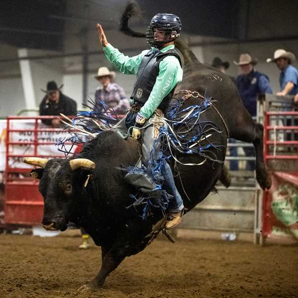 PAMPLIN MEDIA GROUP PHOTO: LON AUSTIN - Chase Dougherty rides a bull at the recent Buckin' for Rowdy fundraiser in Prineville on Saturday, Dec. Dougherty won the bull riding average and the Top Gun award at the National Finals Rodeo in Las Vegas, Nevada, this past December.