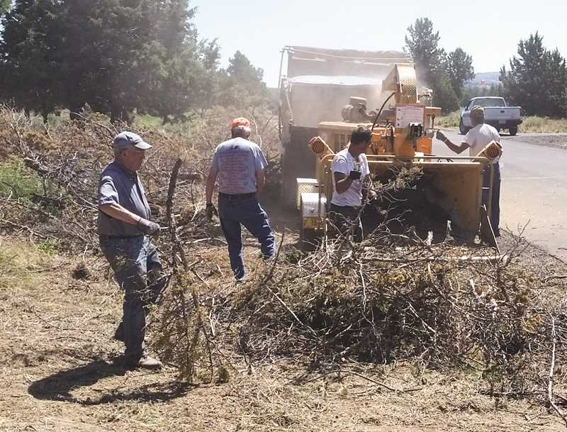 PHOTO COURTESY OF DARRELL GERRARD  - Residents of the Dry Creek Airpark neighborhood conduct a clean-up to reduce wildfire danger on local properties.