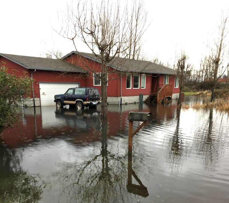 PHOTO COURTESY OF SCAPPOOSE BAY WATERSHED COUNCIL - The yard and driveway of a home in Scappoose sits in standing water before a drainage project was started by Columbia County to remedy the flooding.
