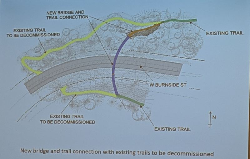 COURTESY: PORTLAND PARKS FOUNDATION - Currently Wildwood trail walkers have to descend to road level and take their chances at an unmarked crossing on a curve.