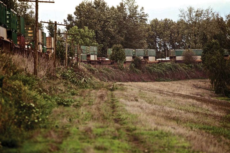 TRIBUNE FILE PHOTO  - This is the railroad embankment that failed spectacularly in the 1948 Vanport Flood. Though it was eventually repaired after the flood, 71 years later it is perhaps the most unsafe part of the 27-mile levee system and needs to be replaced.