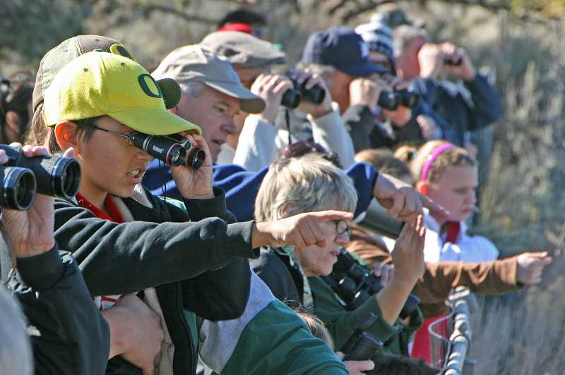 SUBMITTED PHOTO - Visitors to last year's Eagle Watch grab their binoculars to watch eagles nesting in the Lake Billy Chinook canyon. The 24th annual event will be held Saturday and Sunday, Feb. 23-24, at Round Butte Overlook Park.