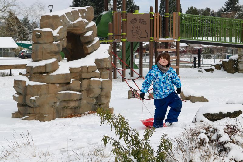 TRIBUNE PHOTO: ZANE SPARLING - David, 8, delights in the snow-covered Khunamokwst Park in Portland's Cully neighborhood on Saturday, Feb. 9.