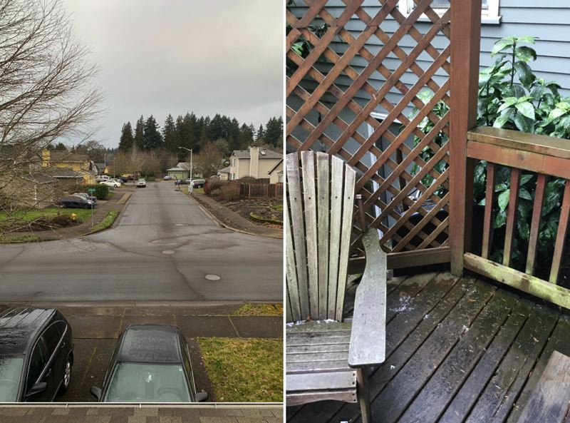 SUBMITTED PHOTOS - Photos show the lack of snow in Hillsboro, left, and Lake Oswegon on Saturday, Feb. 9.