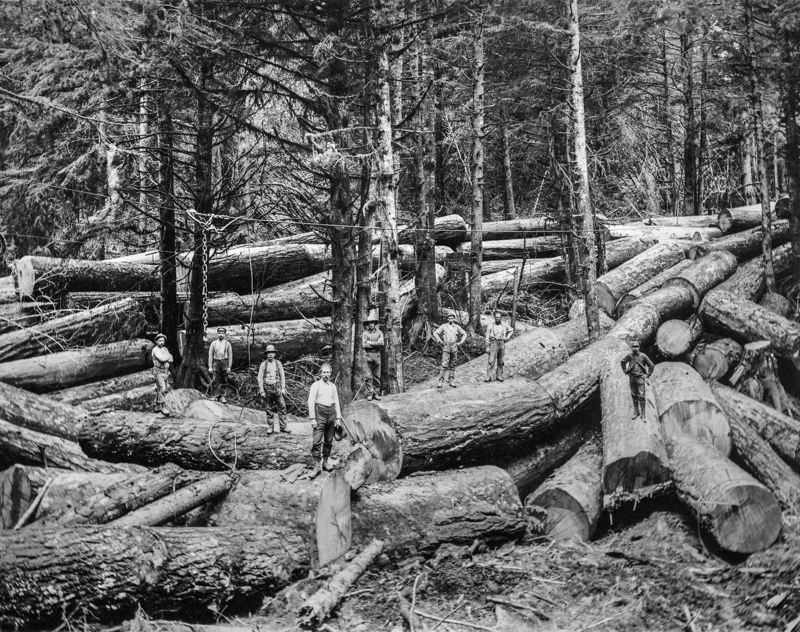 COURTESY: OREGON HISTORICAL SOCIETY - The agriculture and timber industries are examined in 'Experience Oregon.'