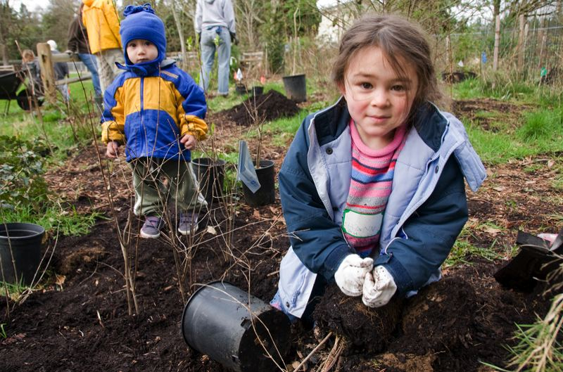 PHOTO BY BRUCE MACGREGOR - Young volunteers plant some native shrubs at the Mill Pond site.