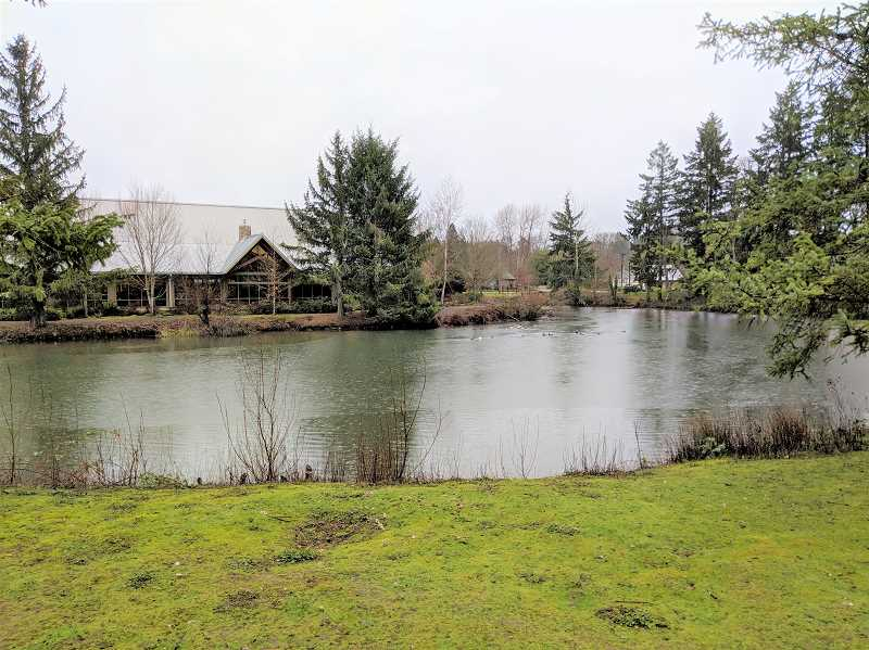 PMG FILE PHOTO - The area behind the Estacada Public Library is the focus of the next phase of Wade Creek Park.
