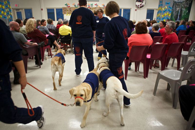 PMG FILE PHOTO - Inmates at Coffee Creek Correctional Facility in Wilsonville trained service and working dogs as part of a prison program.