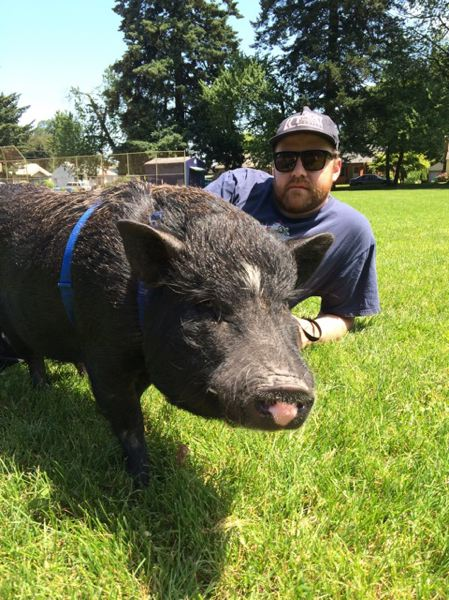 COURTESY: RYAN GAUL - Chef Ryan Gaul poses with his pet mini pig Clancy. Gaul is the new chef at Doug Fir Lounge, and he's scaling up the food.