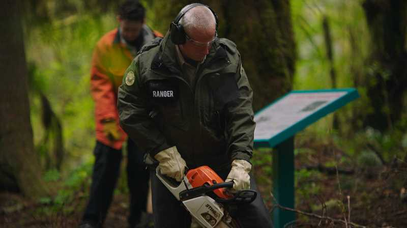 COURTESY PHOTO: BLEECKER STREET -  Victor Harshman played a park ranger in the 2018 film 'Leave No Trace,' which filmed scenes in Eagle Fern Park.