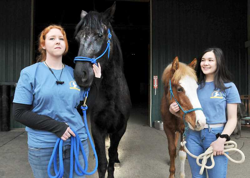 GARY ALLEN - Molly Wong (right) and mentor Alyssa Huntley are 'gentling' two wild horses in order to prepare them for adoption.