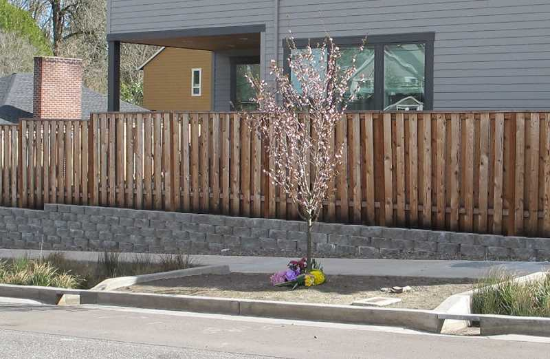 PMG PHOTO: BILL GALLAGHER - The woman who was hit and killed by a van which then drove away Monday morning, was walking north on Southwest 45th near SW Carson. Flowers in her memory have been placed there.