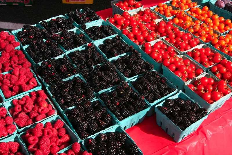 PMG FILE PHOTO - The Gresham Farmers Market is a great place to pick up fresh produce.