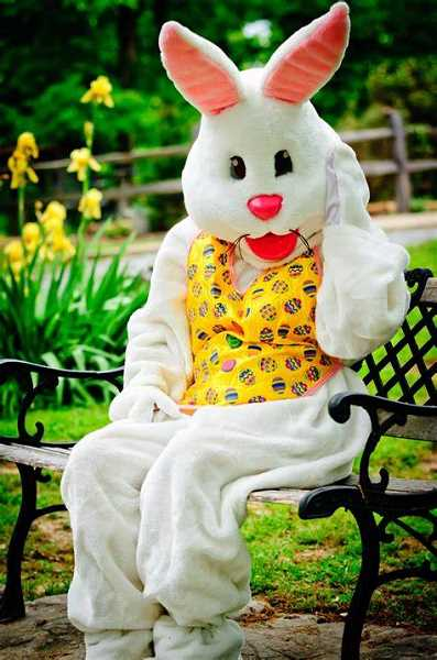 The Easter Bunny will be making appearances all around town soon.  Learn more here.