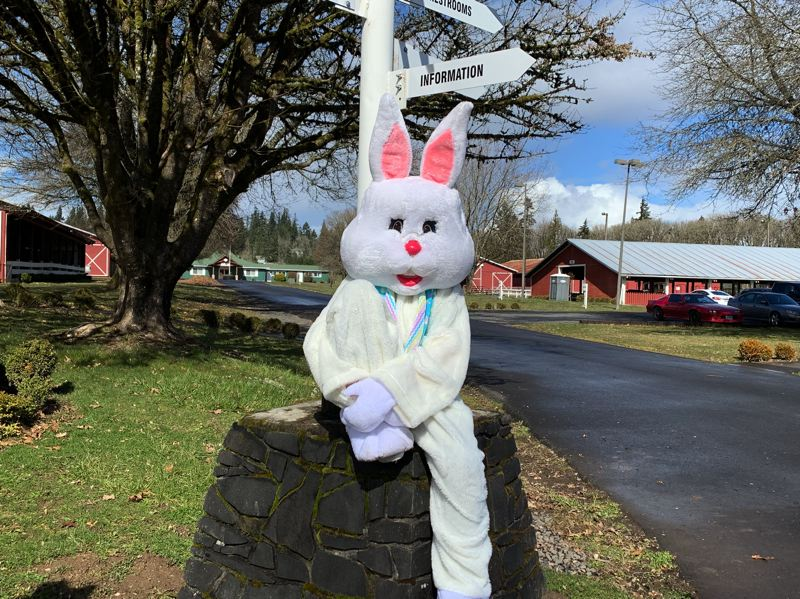 COURTESY PHOTO: MEGGA EGG HUNT  - The annual mEGGa Egg Hunt hosted at the Columbia County Fairgrounds offers free candy hunts, a varierty of activities and prizes for all children who attend. This years event will be held on April 20 and the egg hunt will start at 11 a.m. sharp.
