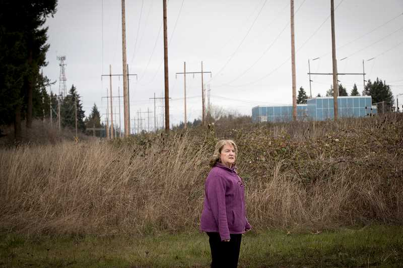 PAMPLIN MEDIA GROUP: JAIME VALDEZ - Yvonne Addington, former president of the Tualatin Historical Society and a former Tualatin city manager, stands north of the general area where wreckage was strewn following the 1952 plane crash when a  B29 Superfortress collided with a F94 Starfire between Tualatin and Wilsonville. The B29 crashed to the ground, taking down sections of a Bonneville Power Administration powerline and killing all 11 crewmen.
