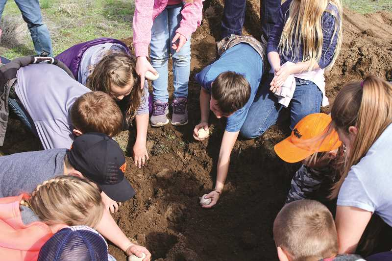 HOLLY SCHOLZ/CENTRAL OREGONIAN   - Second-graders in Kim Bartolotti's Barnes Butte Elementary class searched for fossils at the Barnes Butte Recreational Area Friday morning as part of their paleontology Storyline.