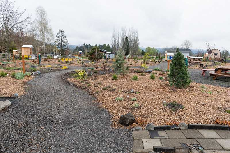 PMG PHOTO: CHRISTOPHER OERTELL - Washington County Masters Gardeners Association will celebrate its new Education Garden on PCC Rock Creek's campus with an open house on Friday, May 17 from 1 to 2:30 p.m.