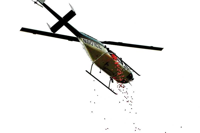 """DAVID F. ASHTON - Above Brentwood Park, a helicopter dispenses empty plastic Easter eggs, to be redeemed for candy, at the eighth annual """"Hope City Egg Drop""""."""