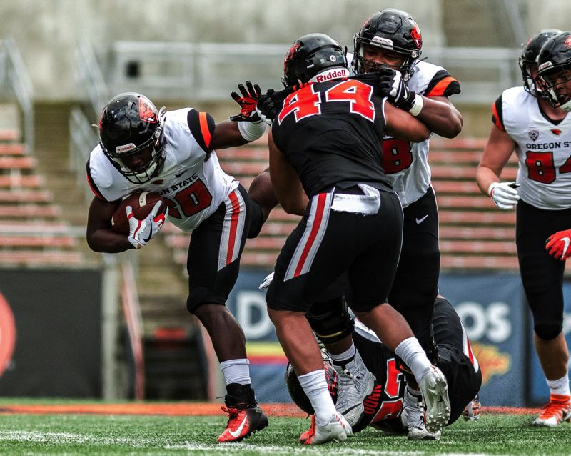 COURTESY PHOTO: MEGAN CONNELLY - B.J. Bayor picks up yardage during Oregon State's spring game at Reser Stadium.
