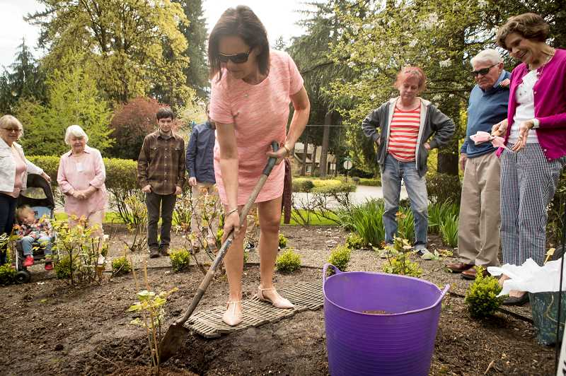 Sally Robb shovels dirt around an Amazing Grace rose plant that was planted in honor of her mom, Ann Powers, at Oswego Heritage House.