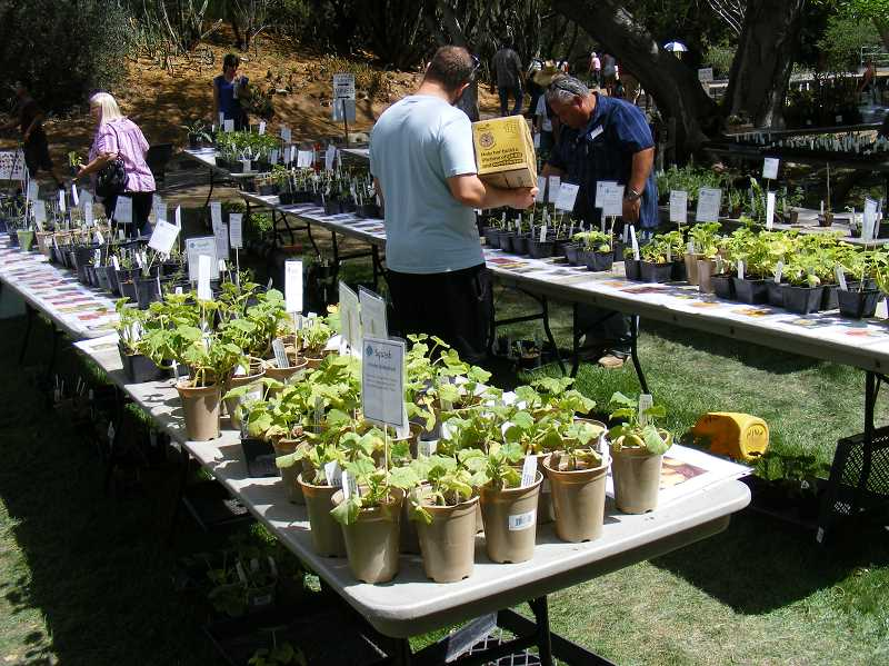 Don't miss the annual plant sale at the West Linn Adult Community Center.