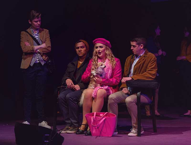 COURTESY PHOTO: A LIFE CONDENSED PHOTOGRAPHY - 'Legally Blonde: The Musical' stars Logan Switzer, Kieran Thomas, Rachel Doyel, Mickey the Chihuahua and Max Powell.