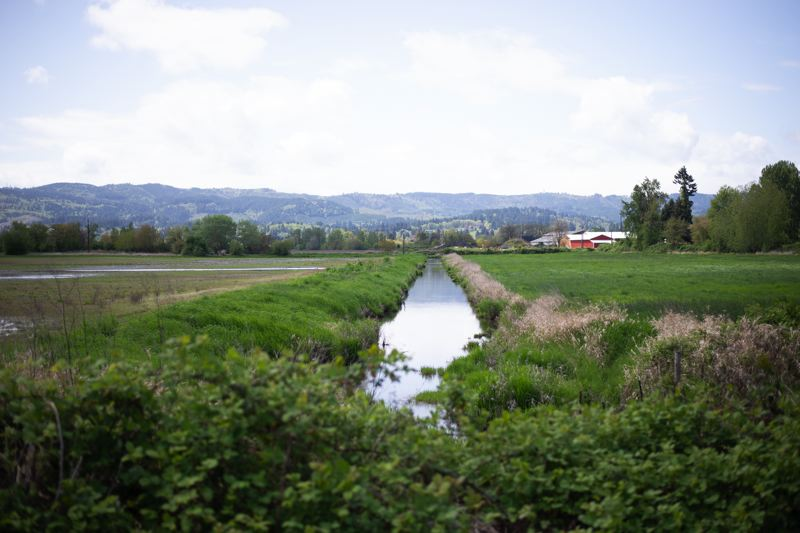 PMG PHOTO: ANNA DEL SAVIO - From the Crown Zellerbach Trail in Scappoose, visitors can see farming operations, wetlands and construction. The amount of farmland in Columbia County has decreased in recent years, but the number of farms has gone up.