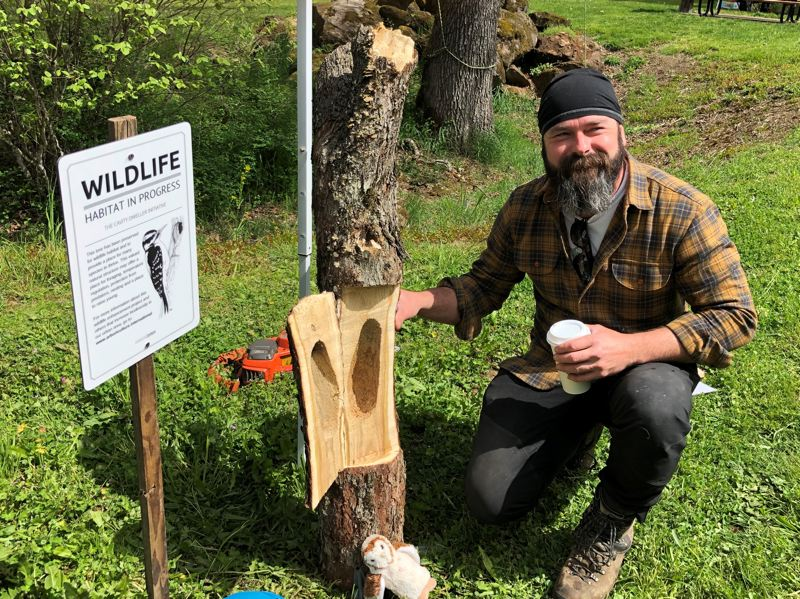 Brian French's various demonstrations at the event included habitat displays and scaling an oak to show how to measure trees and assess their health.