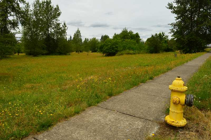 PMG FILE PHOTO - The City of Wilsonville wants to create a plan for building a new Public Works facility on Boberg Road.