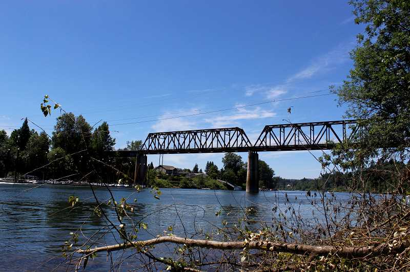 PMG FILE PHOTO - American Rivers describes a Willamette River in crisis, primarily because of how native salmon struggle in its waters.