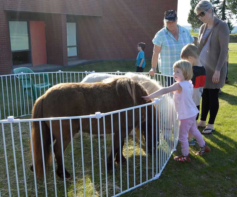 CINDY FAMA - Little attendees visit the miniature horses.