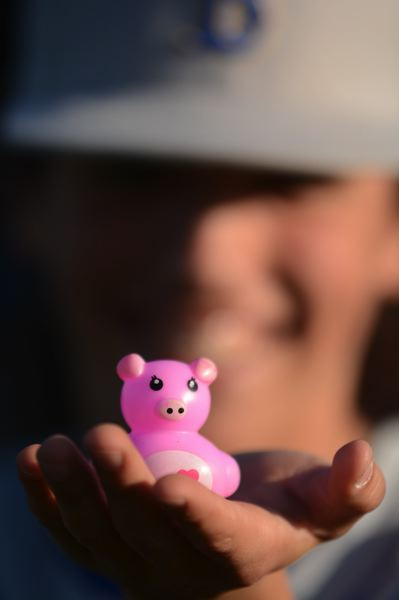 PMG PHOTO: DAVID BALL - Barlows Lukas Johnson holds Gary the Pig, which has become a sort of lucky charm for the team since spring break.