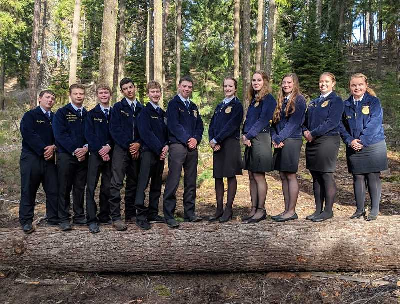 SUBMITTED PHOTO - Culver FFA members line up on a log at the Central Oregon District Leadership Camp.