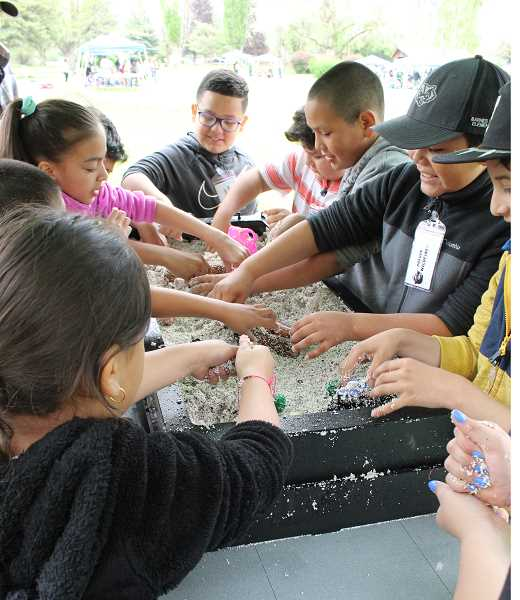 JASON CHANEY/CENTRAL OREGONIAN  - Third graders in Maribel Jimenez's class at Barnes Butte Elementary dig in the sand as they learn about stream ecology.