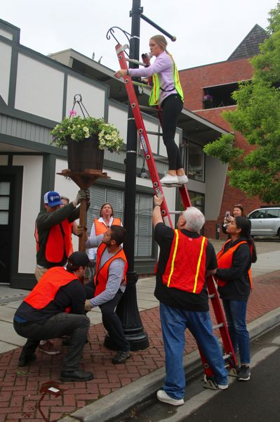 This group of volunteers hung more than 40 flower baskets in downtown Lake Oswego. More than 200 flower baskets were hung throughout Lake Oswego. Shown clockwise starting at the bottom are: Gary Stein, Chris Martin, Miles Haladay, Sophia Ranta, Cary Gatewood, Kit Katanic, Ashley Coke, Ian Monihan and Laura Janes.