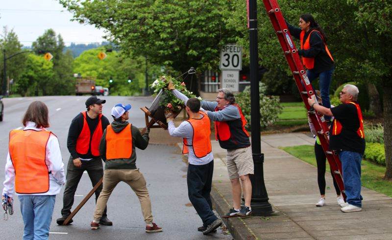 More than 50 volunteers spread throughout Lake Oswego to hang more than 200 flower baskets on Saturday.