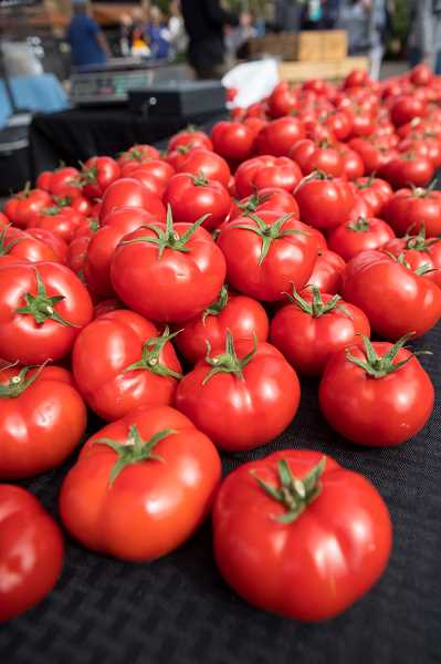 PMG PHOTO: JAIME VALDEZ - Bright red tomatoes from Ridgefield Hydrofarm were some of the colorful produce sold at the Lake Oswego Farmers' Market at Millennium Plaza Park.