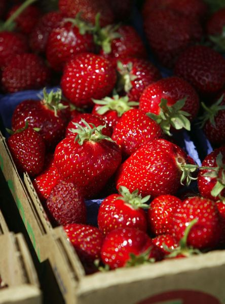 PMG FILE PHOTO - Mmmm. Lookiing for fresh strawberries? Check your phone.