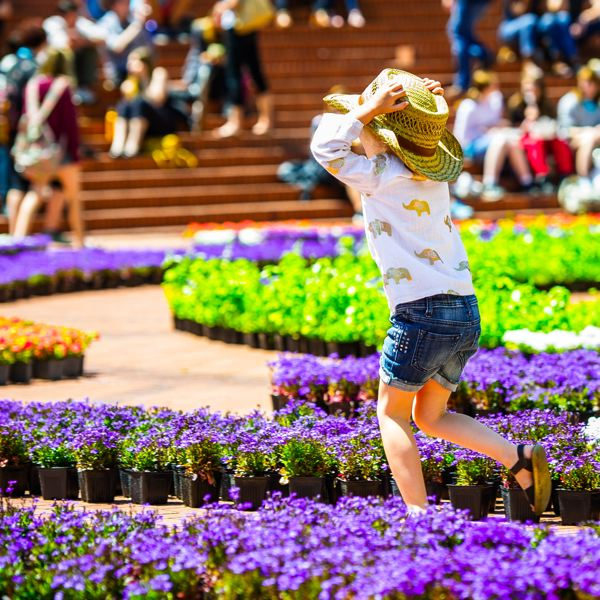 COURTESY: THESQUAREPDX.ORG - Festival of Flowers is a delightful event at Pioneer Courthouse Square through June 4.