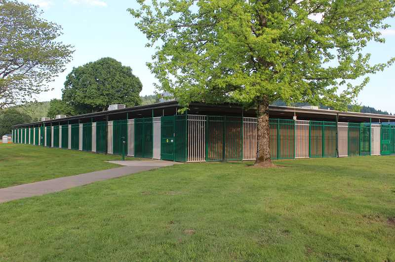 PMG PHOTO: KRISTEN WOHLERS - The new fencing at Mulino Elementary is in place and painted.