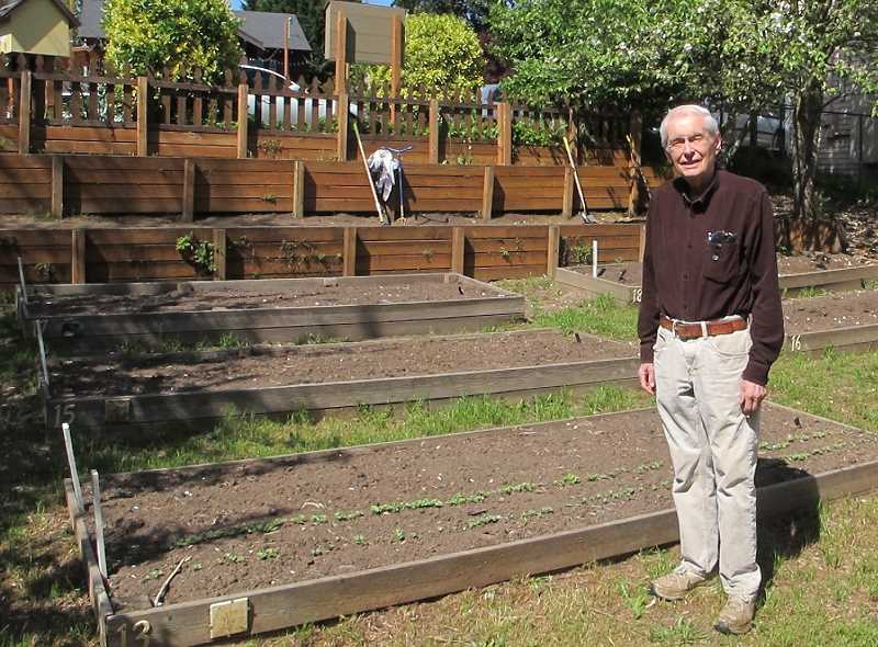 Dan Simchuk at the garden before his turnips started growing.