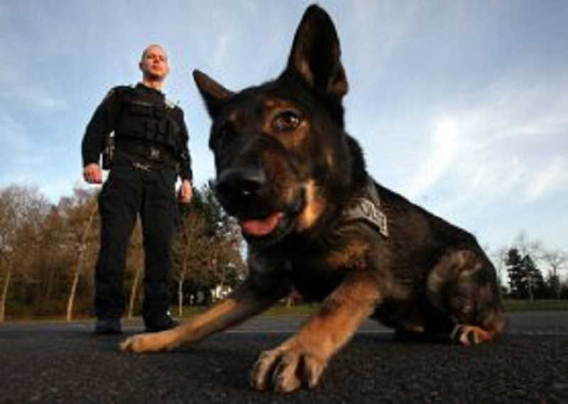 TIMES FILE PHOTO: JAIME VALDEZ - Officer Brian Jackson was Baxters first partner when the K-9 came onboard in 2007, seen in this 2008 file photo.
